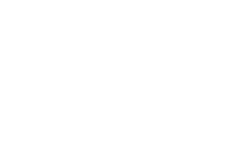 MSF Sports Pty Ltd